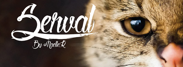 Serval Free Font by Mael.K in 23 New Free Fonts and Typefaces