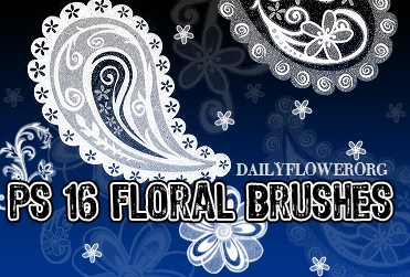 ps_floral_brushes_by_creativesplash