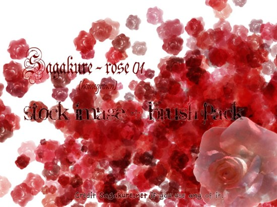 29-Free-Rose-Brushes
