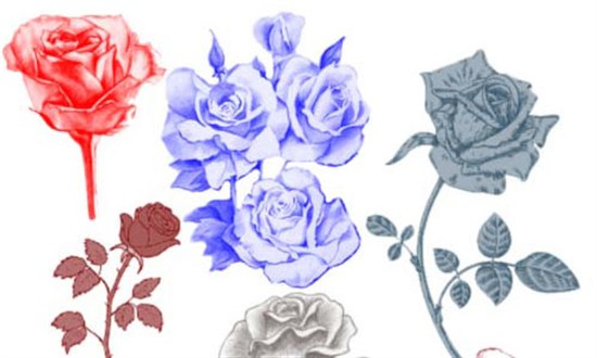 17-Free-Rose-Brushes