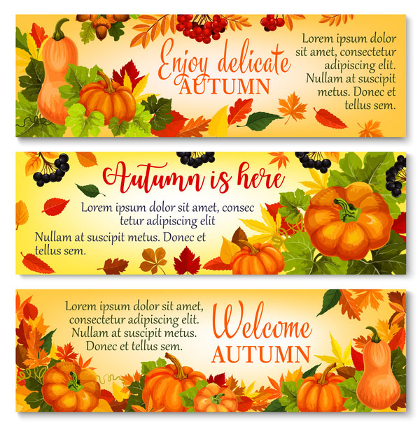 Harvest the fall banner vector material 05