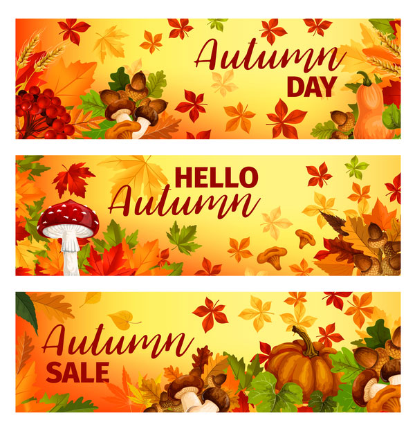 Harvest the fall banner vector material 07